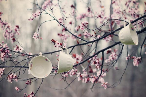blossom-cup-cups-spring-tea-Favim.com-124979
