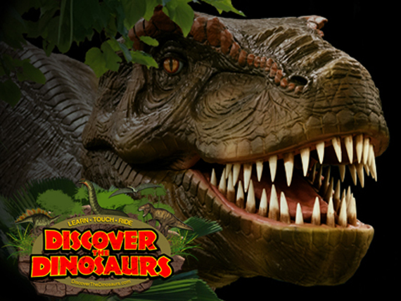 discover-the-dinosaurs15